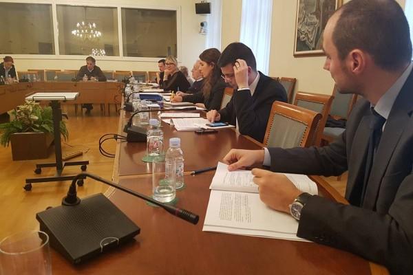 Sjednica Saborskog Odbora za ljudska prava